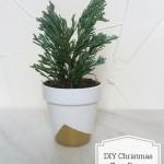 DIY Christmas Tree Favor