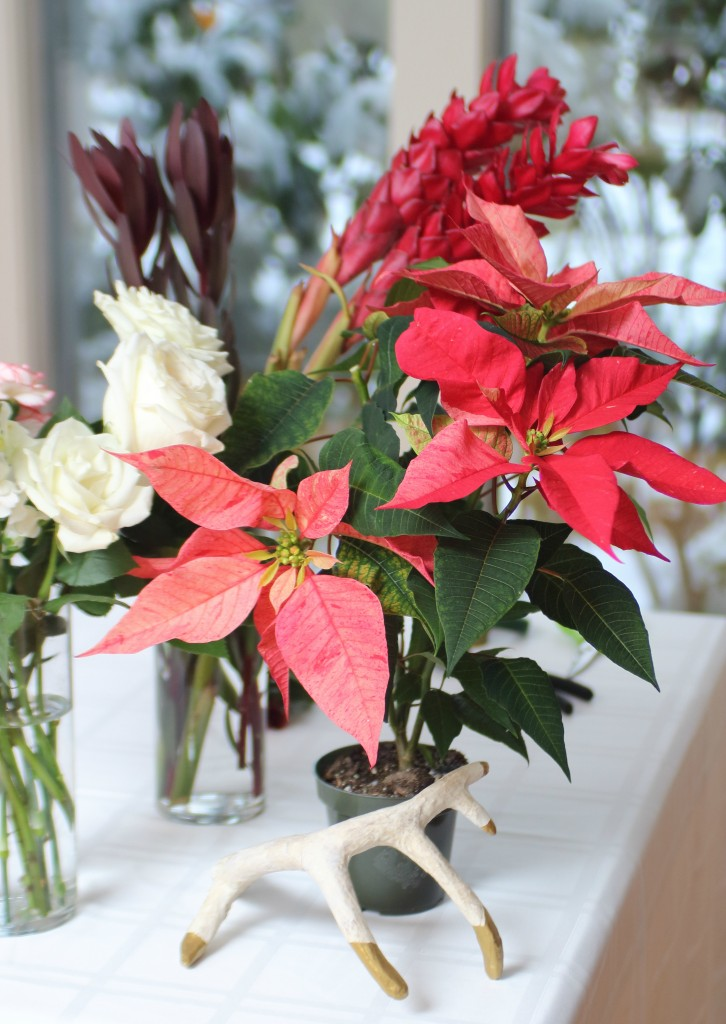 Grand Rapids Wedding Planner and Floral Designer - DIY Christmas Holiday Flower Arrangement Centerpiece - Step Supplies