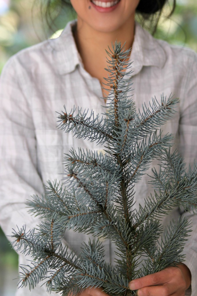 Grand Rapids Wedding Planner and Floral Designer - DIY Holiday Planter - Christmas evergreen and berry planter or urn - Step 1