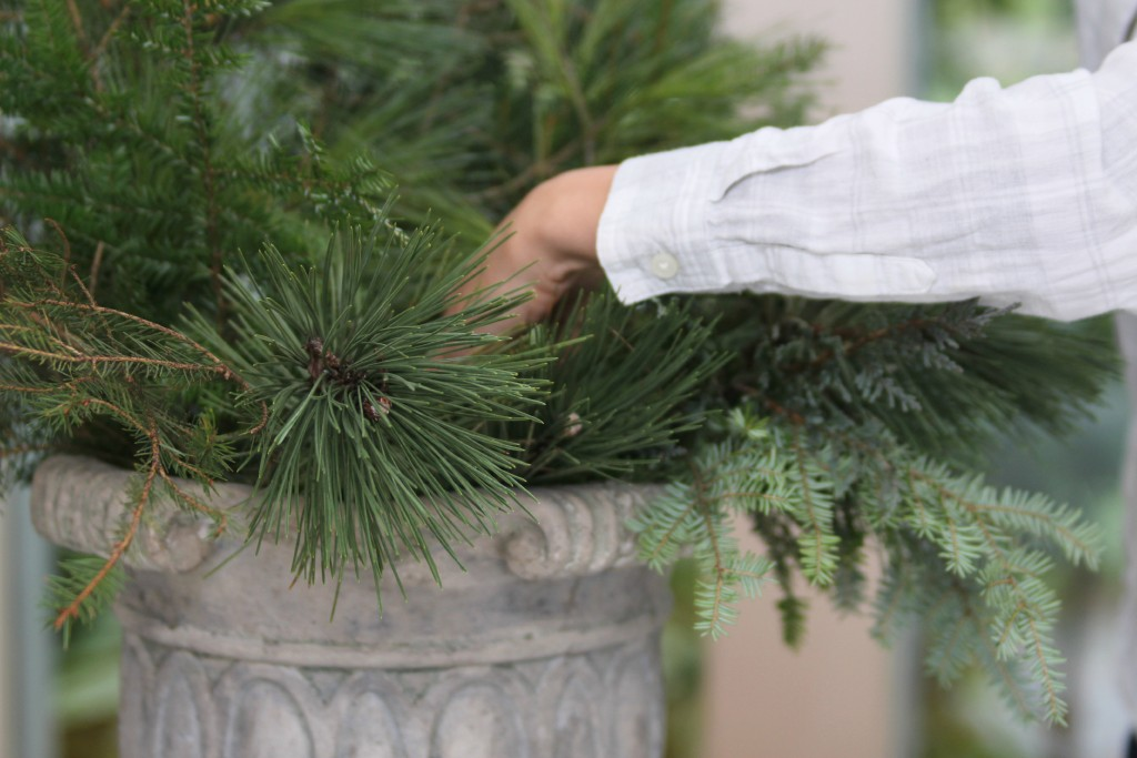 Grand Rapids Wedding Planner and Floral Designer - DIY Holiday Planter - Christmas evergreen and berry planter or urn - Step 5