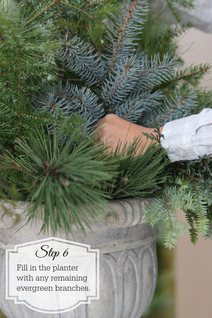 Grand Rapids Wedding Planner and Floral Designer - DIY Holiday Planter - Christmas evergreen and berry planter or urn - Step 6